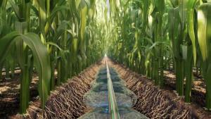 סרט מוצר לתחום החקלאות ואגרוטק - פרוייקטים שהפקנו בוידאו ואנימציה - breeze-animation.com